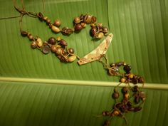 collar hecho con semillas de tagua,cerebrito,bolas de madera,azayán,nacar,piedras semipreciosas,cristales de murano,con dije de madera tejido en fibra de platano,pendientes en plata y semillas