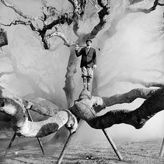 Rodney Smith's unusual interpretation of the world