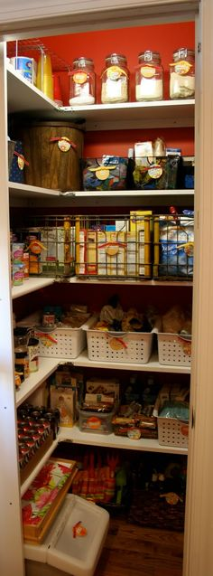 Using those plastic bins in the pantry...I actually do this! I'm a bin, tote, container freak.