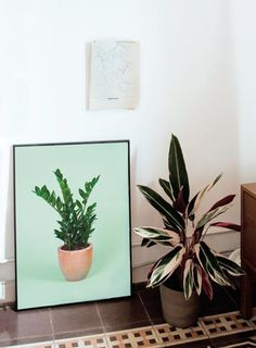 5 Times That Fake Plants Make The Cut (Or Do They?)