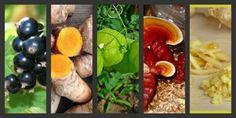 Cortisona: 5 alternativas naturais