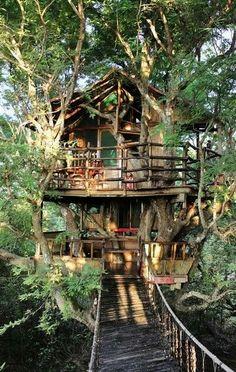 Diy cool tree houses #homedecor #homedesign #diyhomedecor #treehouses.