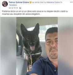 Salvati cainele politist . Pets, Animals And Pets