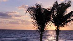 Mark photography at Gran Caribe Real Resort & Spa