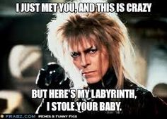 """Labyrinth - This is one of those """"it's funny cause it's true"""" memes. You laugh and then you go, whoa that is in essence what the movie is about..."""