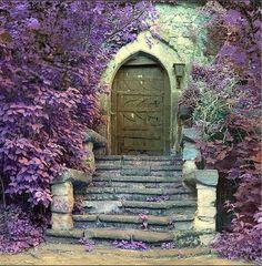 Unique old door