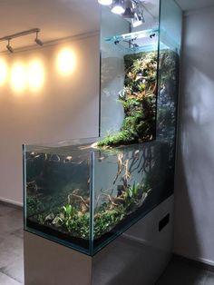 45 Stunning Aquarium Design Ideas for Indoor Decorations aquascaping Planted Aquarium, Aquarium Aquascape, Diy Aquarium, Aquarium Design, Aquascaping, Aquarium Landscape, Saltwater Aquarium, Aquarium Fish Tank, Freshwater Aquarium
