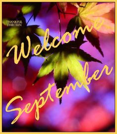 Welcome September leaves leaf september hello september september quotes september images september pics welcome september images Welcome September Images, September Quotes, September Pictures, September Calendar, Hello September, Seasons Months, Days And Months, Months In A Year, New Month Wishes