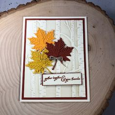 Stamp with Anna: Colorful Seasons/Seasonal Layers Thanksgiving Card Thanksgiving Greeting Cards, Making Greeting Cards, Fall Cards, Holiday Cards, Christmas Cards, Handmade Thanksgiving Cards, Thanksgiving Table Settings, Thanksgiving Crafts, Xmas