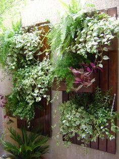 jardim vertical, como montar, e o que plantar