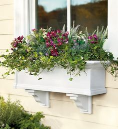 Flower boxes for the kitchen window  - herbs in one, cutting flowers in another.