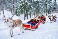 1. ROVANIEMI - From places that come alive at Christmas and the New Year to great cities at their best in the cold, here are the 10 best winter destinations in Europe. Best Winter Destinations, Christmas Destinations, Europe Destinations, Winter Vacations, Lonely Planet, Art Japonais, Voyage Europe, Parc National, Medieval Town