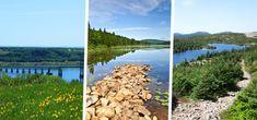 3 longues randonnées au Québec Vineyard, Outdoor, Outdoors, Outdoor Games