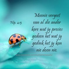 Afrikaans Good Morning Inspirational Quotes, Inspiring Quotes, Evening Greetings, Afrikaanse Quotes, Thy Word, Faith In Love, Spiritual Inspiration, Dear God, Best Quotes