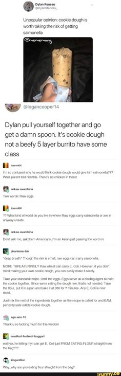 Unpopular opinion: cookie dough is worth taking the risk of getting salmonella Dylan pull yourself together and go get a damn spoon. It's cookie dough not a beefy 5 layer burrito have some class u I'm so confused why he would think cookie dough wou Stupid Funny, The Funny, Funny Stuff, Random Stuff, Funny Boy, Funny Things, Funny Quotes, Funny Memes, Jokes