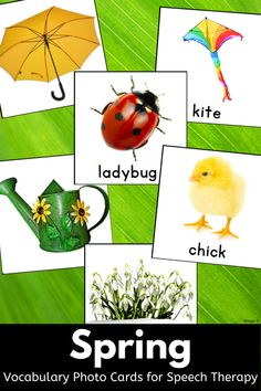 Nice and simple pictures for Spring! I printed on card stock, laminated and we played memory, answered wh questions, sorted into categories, described the pictures, and constructed sentences. These are high quality beautiful photographs! I use them with my older students with significant disabilities. The photos are so age appropriate. #spring #vocabulary #photocards Spelling Activities, Vocabulary Activities, Speech Therapy Activities, Language Activities, Classroom Activities, Primary Resources, Teaching Resources, Teaching Ideas, Articulation Therapy