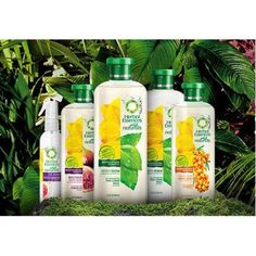 Herbal Essences Wild Naturals Hair Care Collection