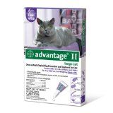 Bayer Advantage II Purple 6-Month Flea Control for Cats, 9-Pound