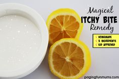Magical Itchy Bite Remedy - made with only 3 ingredients. The ultimate item to have in your fridge, take camping, on a picnic, a sporting event or the beach!