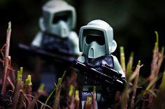 Morning chive patrol... by im.mick, via Flickr