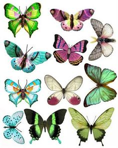 What A Beautiful Mess: Butterfly Printables Arte Fashion, Paper Art, Paper Crafts, Butterfly Wings, Butterfly Mobile, Beautiful Butterflies, Paper Butterflies, Illustration, Clip Art
