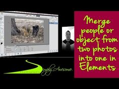 Learn Photoshop Elements - Merge people from two photos into one - YouTube