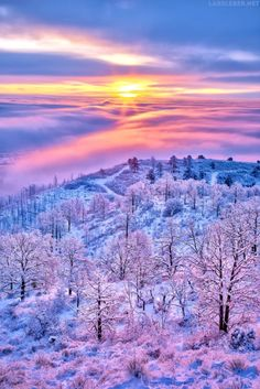 Above the Clouds (Colorado). A refreshing winter sunrise. Looking over fog/cloud-covered Colorado Springs. Beautiful World, Beautiful Images, Above The Clouds, Beautiful Sunrise, Winter Beauty, Winter Scenes, Nature Pictures, Amazing Nature, Winter Wonderland
