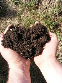 Aside from creating nutrient dense soil for your yard and garden, composting also helps to detoxify the soil, protect land from eros...
