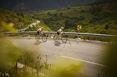 Die malerische Hügellandschaft der Wachau bekommen die beiden Radler ganz schön in den Beinen zu spüren
