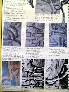 Close up studies in a variety of media