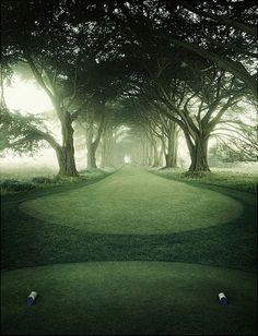 Stinger shot! #golf