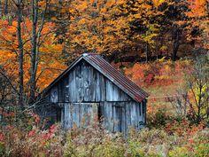 Vermont-autumn-shack