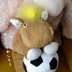 仔馬の「ポニー」