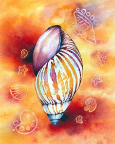 watercolor seashell - Google Search