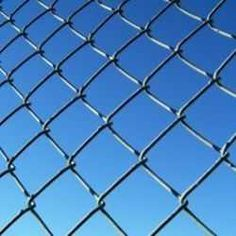 Cover a chain link fence in no time flat.  Great website for different vines to cover a fence, saving you money and making the backyard more beautiful! Winning!