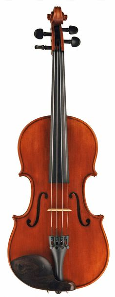"""""""This week I took delivery of a Virtuoso Violin, a Hoffman bow and the deluxe oblong case. Visually I was impressed. The fittings are beautiful. I played it and knew it was way ahead of the rental equ"""