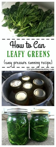 How to can leafy green vegetables (spinach, beet greens) from your garden. Step by step pressure canning for beginners. Canning Soup Recipes, Pressure Canning Recipes, Canning Pressure Cooker, Canning Tips, Home Canning, Pressure Cooking, Jar Recipes, Family Recipes, Recipe Ideas