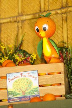 It's great to see the Orange Bird at Magic Kingdom Park at Walt Disney World Resort