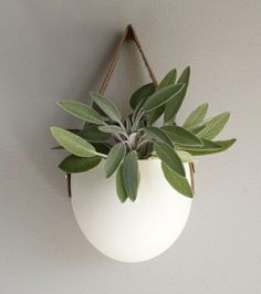 feng shui indoor plants green living ideas positive energy creative wadgestaltung1