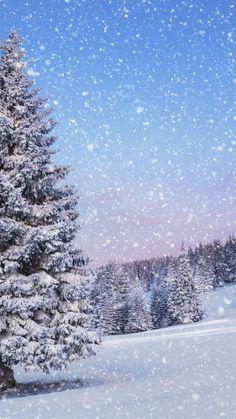 nature landscape snow winter time of the year tree photo Tree Desktop Wallpaper, Wallpapers Wallpapers, Winter Wallpaper, Forest Wallpaper, Winter Pictures, Nature Pictures, Beautiful Pictures, Winter Szenen, Winter Time
