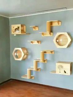 Cat Wall Furniture, Cat Wall Shelves, Cat House Diy, Diy Cat Tree, Cat Bedroom, Pet Hotel, Cat Towers, Cat Playground, Animal Room