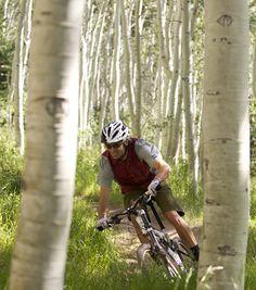 Park City Mountain Biking: Aspens, Bumps, And Beauty