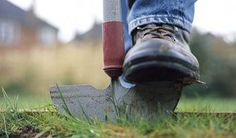 ways to edge a lawn - Google Search
