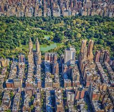 Central Park. NYC.