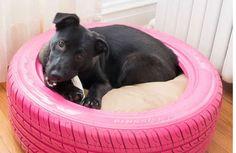 Lit pour chien à partir d'un vieux pneu d'auto
