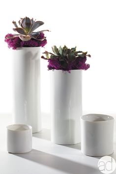 Casual Modern Centerpiece located on the Accent Decor Design Center.