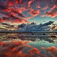 Long Reef, Sydney, Australia