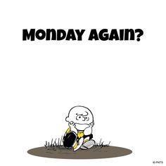 It's Monday again??