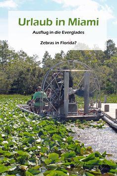 Wir haben von Miami aus einen Ausflug in die Everglades gemacht. Einiges am Ausflug war richtig toll, anderes hat mir leider gar nicht zugesagt. Trotzdem fand ich den Ausflug insgesamt richtig toll. Näheres dazu könnt ihr im Bericht nachlesen.