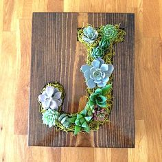 These handmade frames are turned into beautiful vertical succulent gardens. Succulents are drought tolerant and easy to maintain. They require